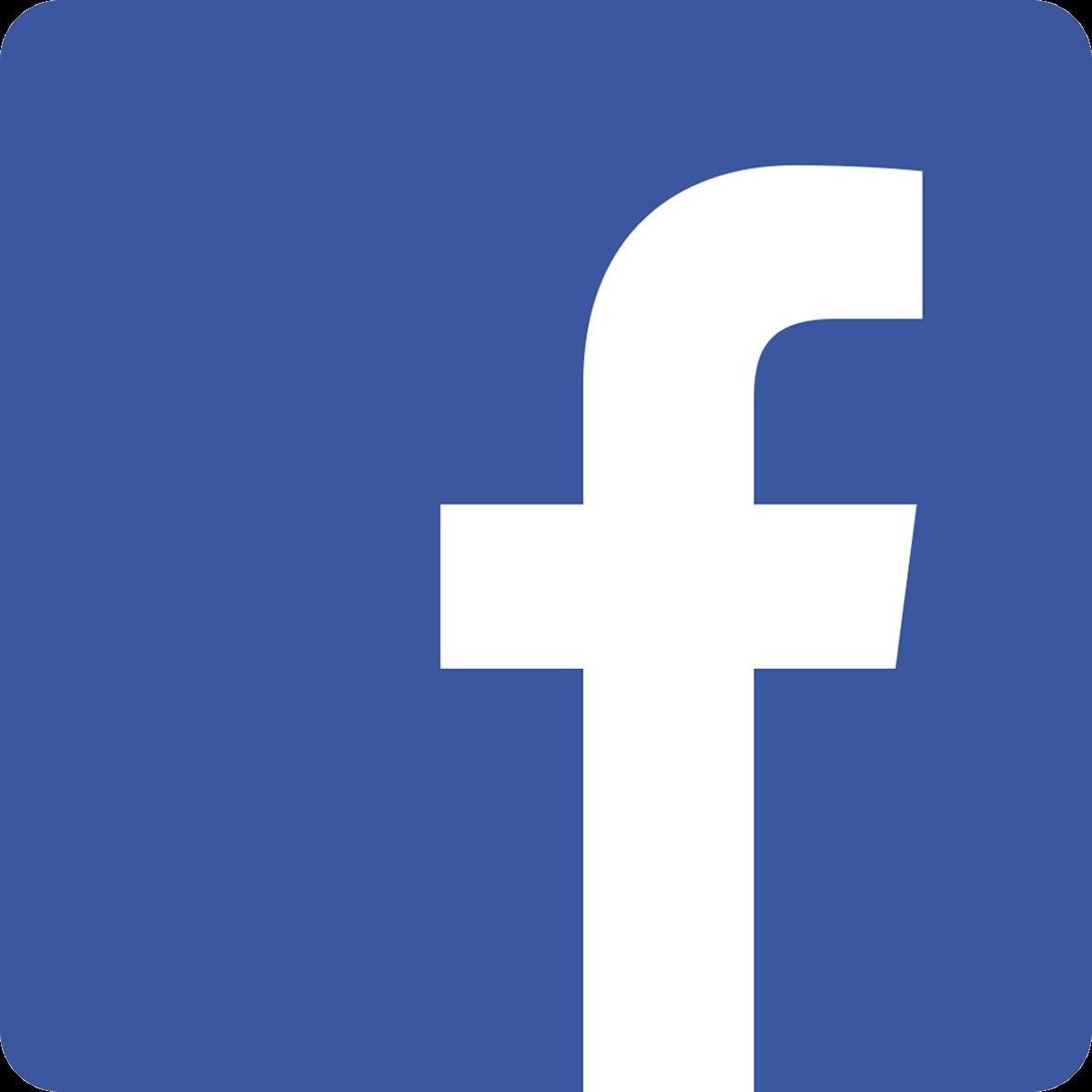 Facebook Texas Icon